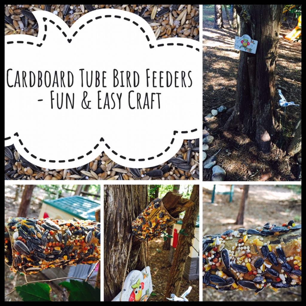 Easy Craft for DIY Bird Feeders