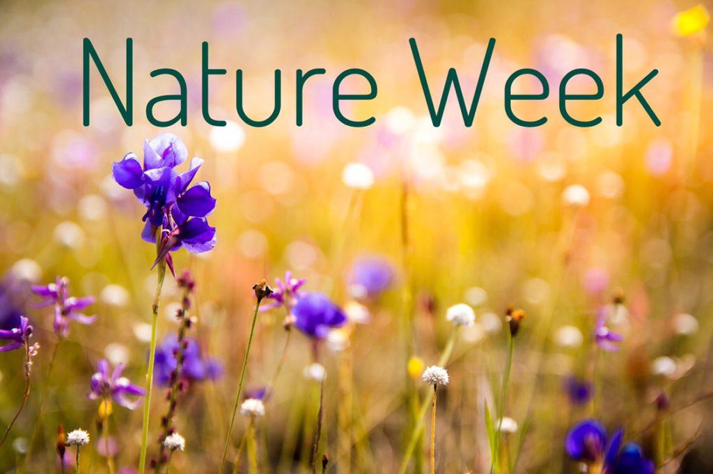 Nature Week