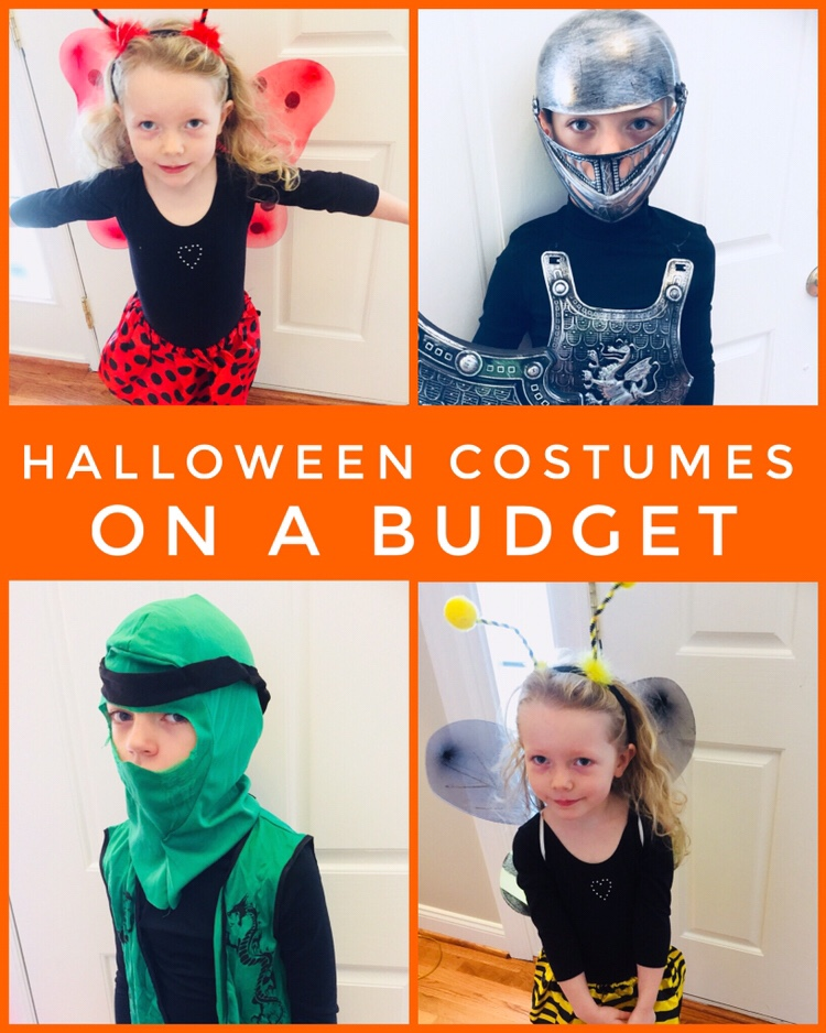 Halloween Costumes on a Budget - Great selection of dress up items at Dollar Tree!