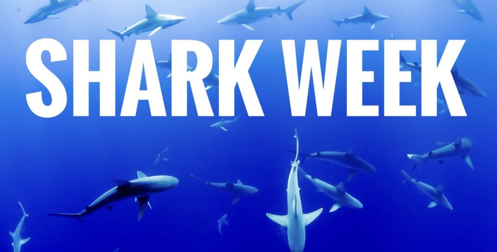 Shark Week for kids