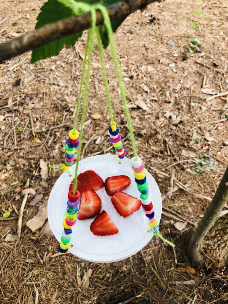 Butterfly Feeder Craft for Kids