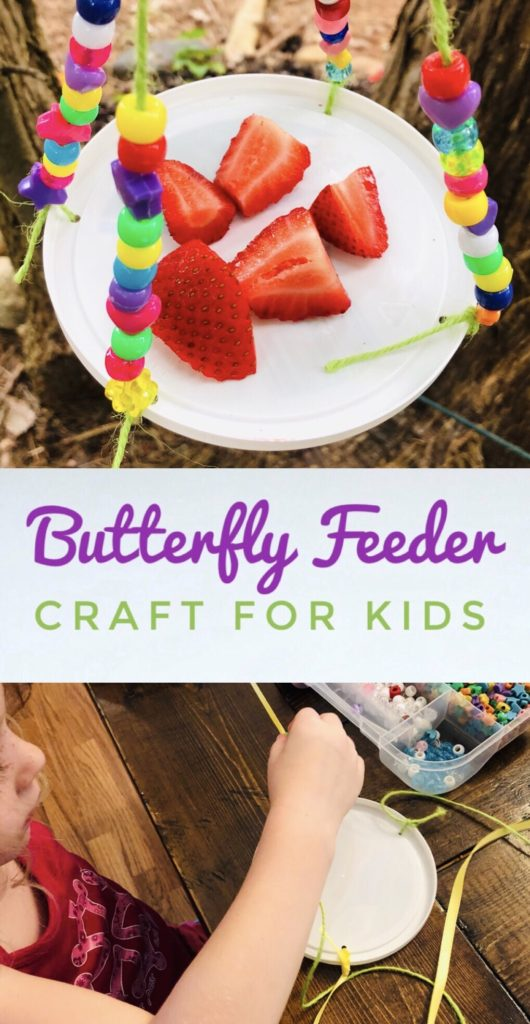 Butterfly Feeder Craft for Kids - easy activity for kids this summer.