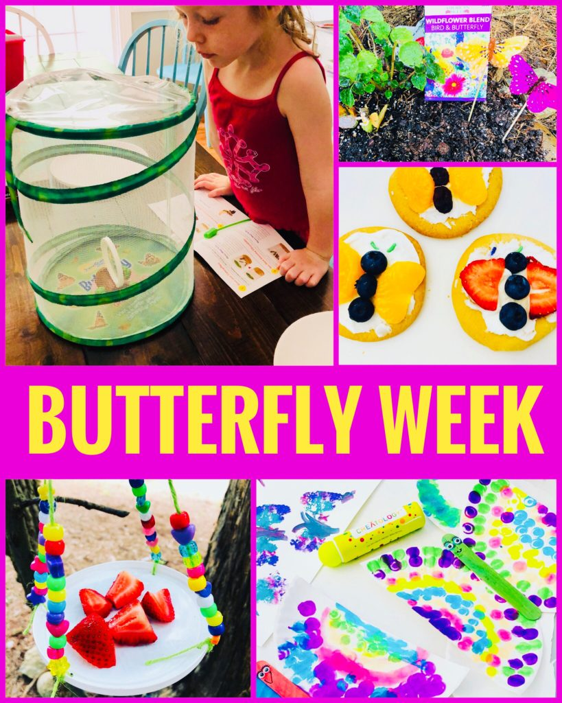 Butterfly Week Crafts and Activities for Kids