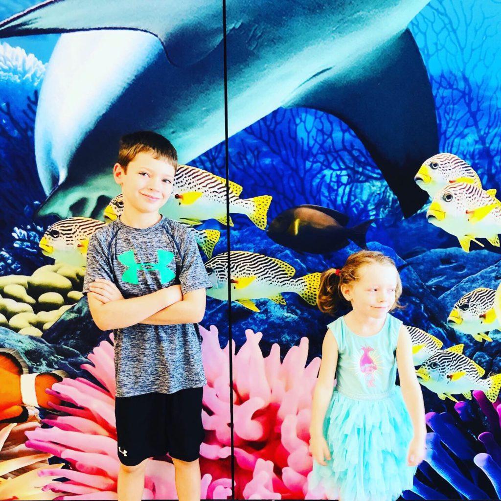 Shark Week Aquarium Visit