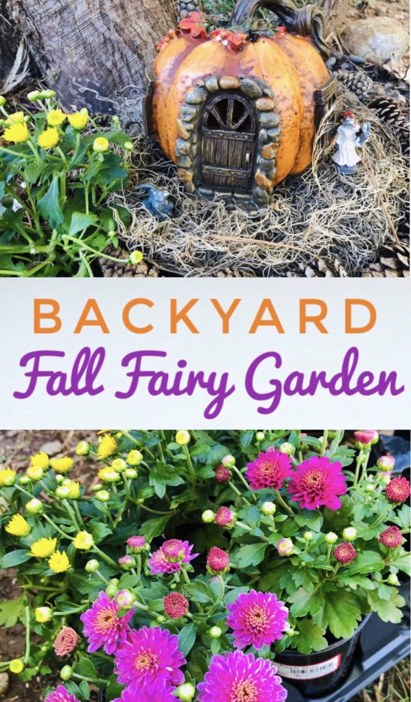 Create a spooky fall fairy garden in your backyard for Halloween using mini mums and items from Dollar Tree. It's a great activity to do with kids.