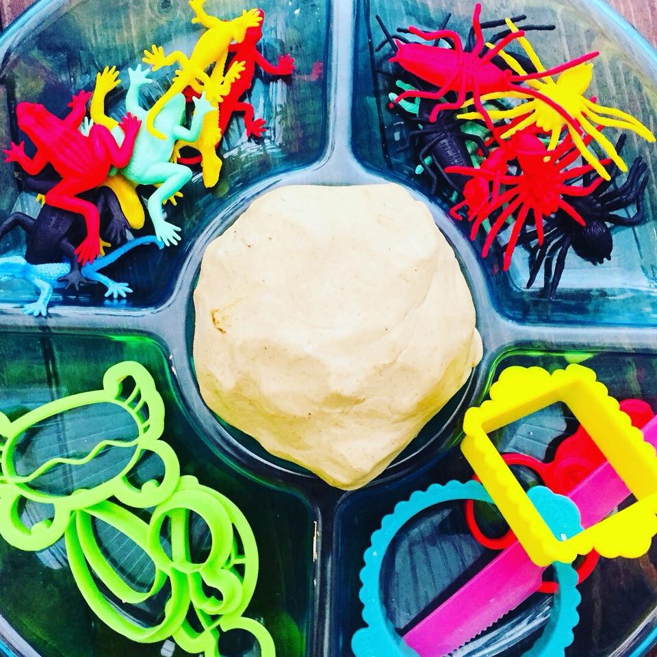 Bugs and Reptiles Invitation to Play Cloud Dough