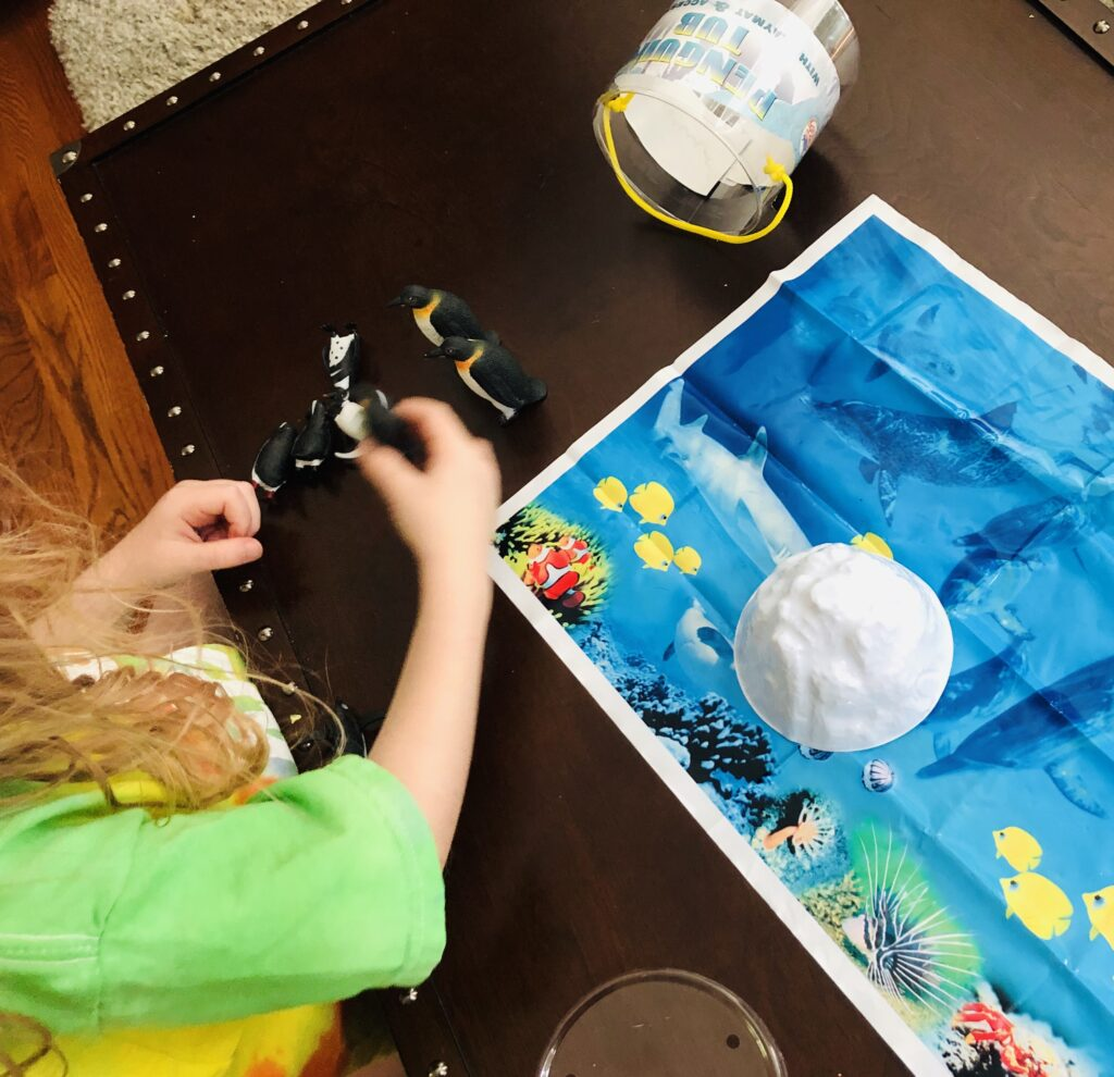 Imaginative Play with Penguins
