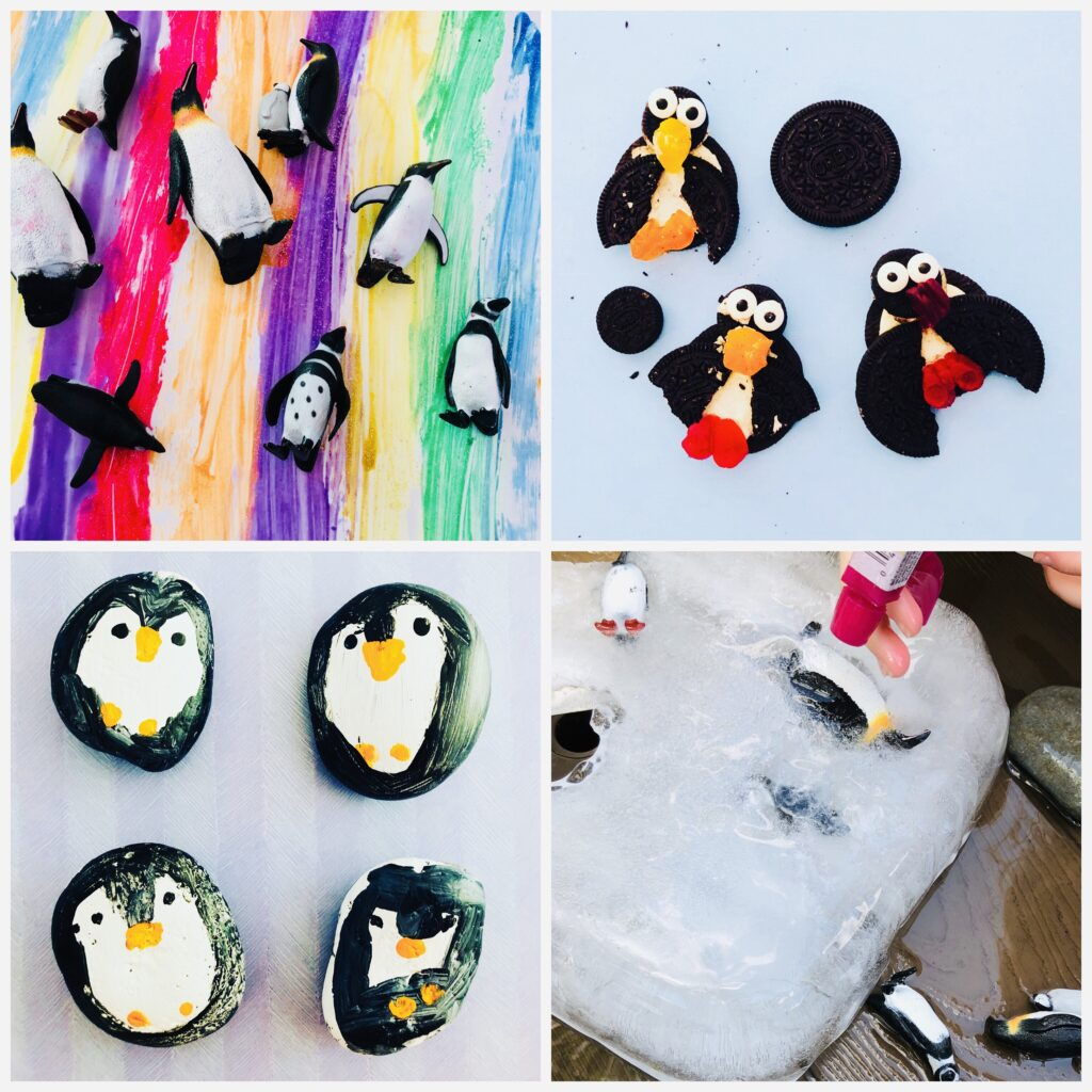 Penguin Week Summer Camp Activities