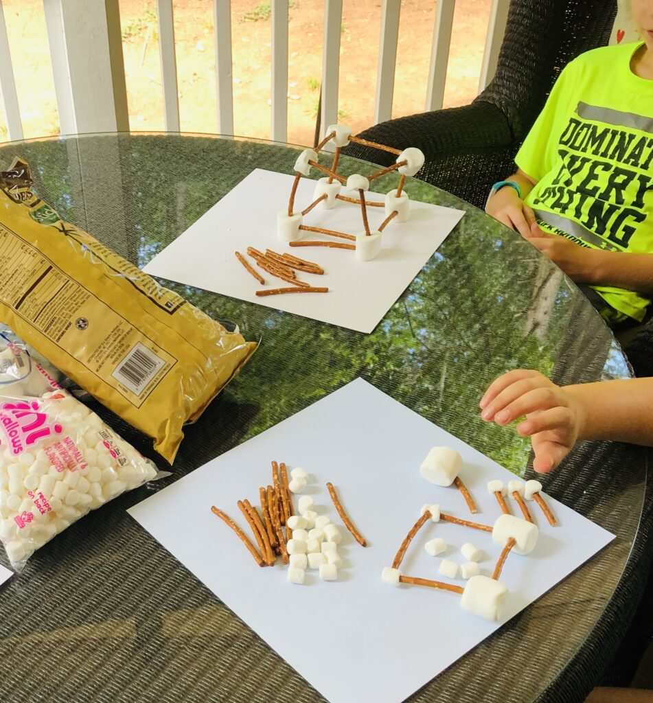 Pretzel and Marshmallow Structure Building