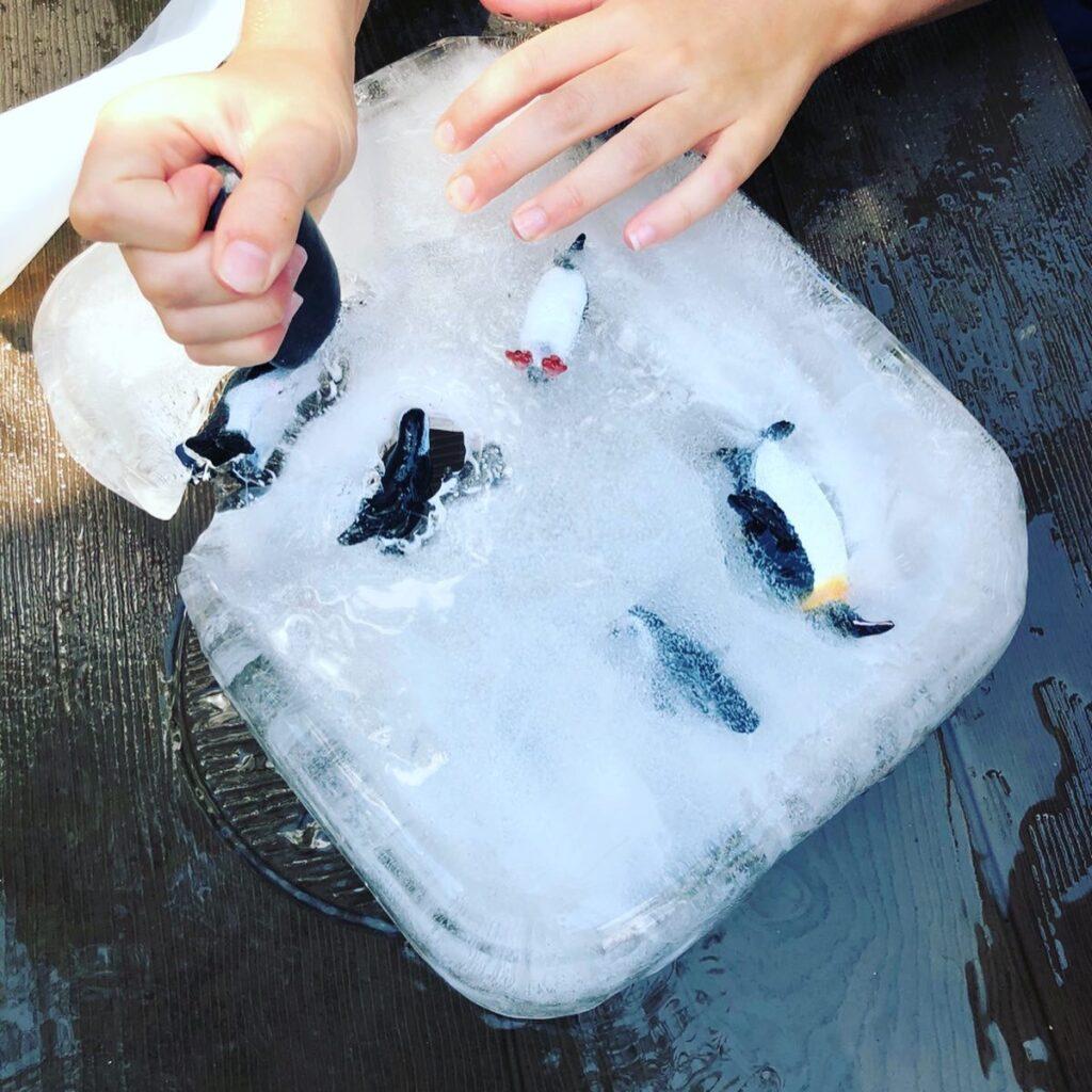 Ice Block Excavation Summer Activity